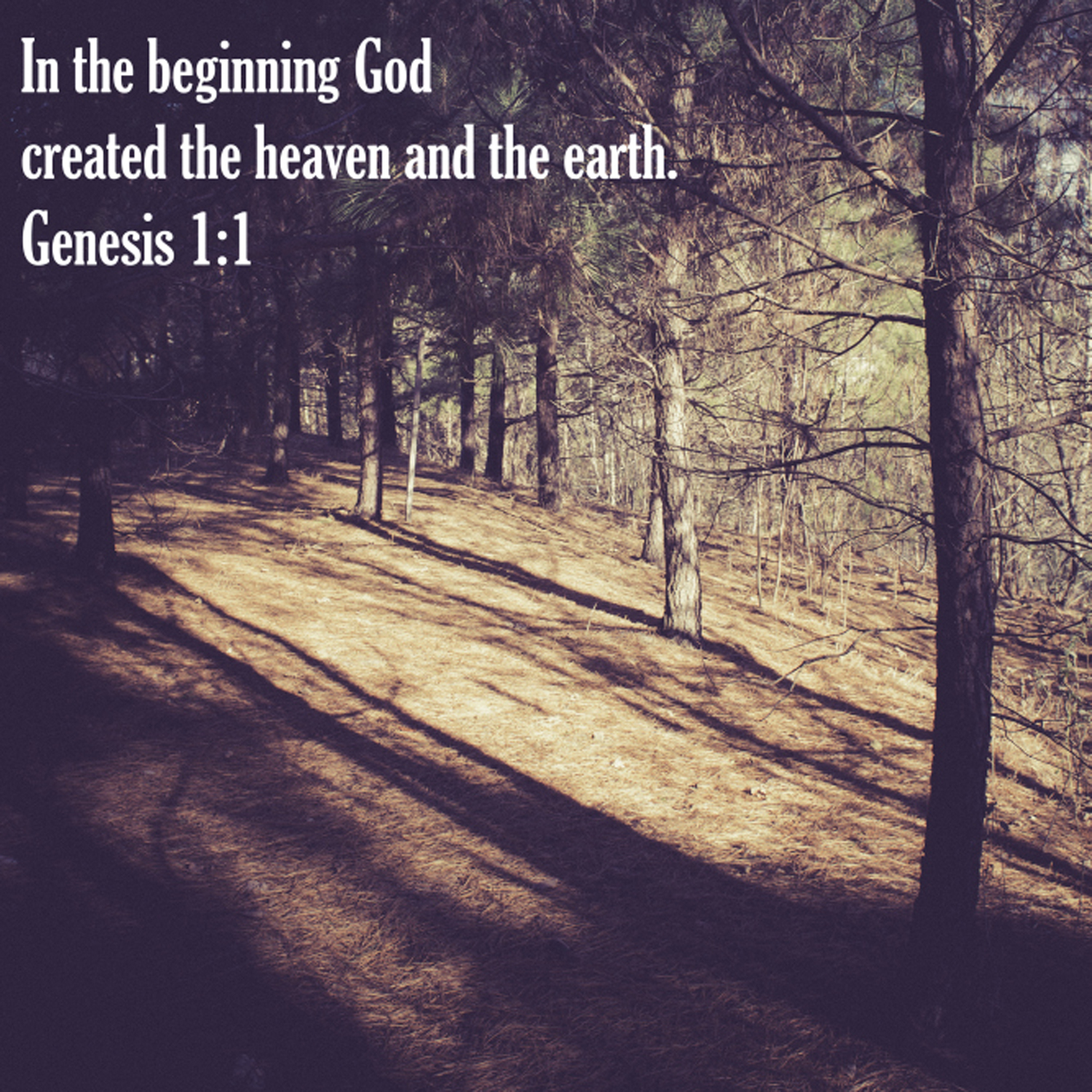 genesis-1-1-in-the-beginning